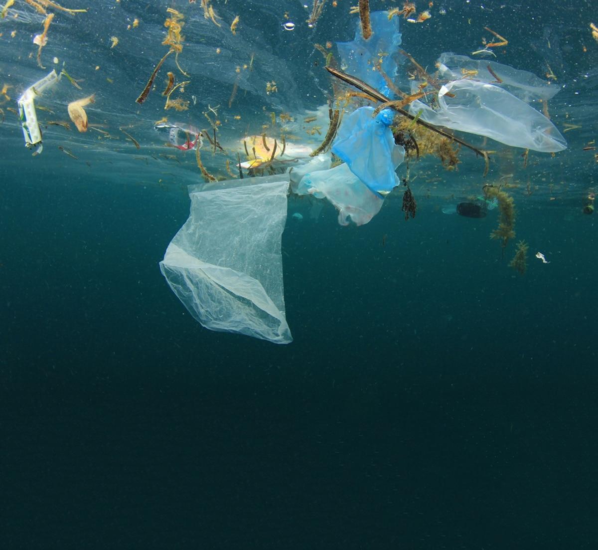 5780e34af Costa Rica se encamina a eliminar los plásticos de un solo uso - La Nación