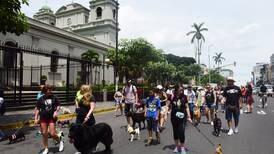 Pocos asistieron a la última Marcha contra el Maltrato Animal