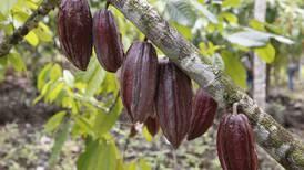 Costa Rica logra acuerdo técnico con Canadá por salvaguardia del azúcar y evita represalias unilaterales