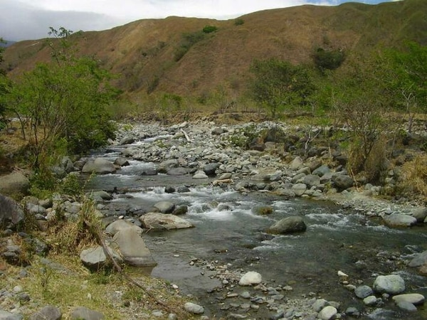 El proyecto pretendía explotar el recurso del río Cañas en la región Brunca.